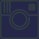 Panacea Instagram Link